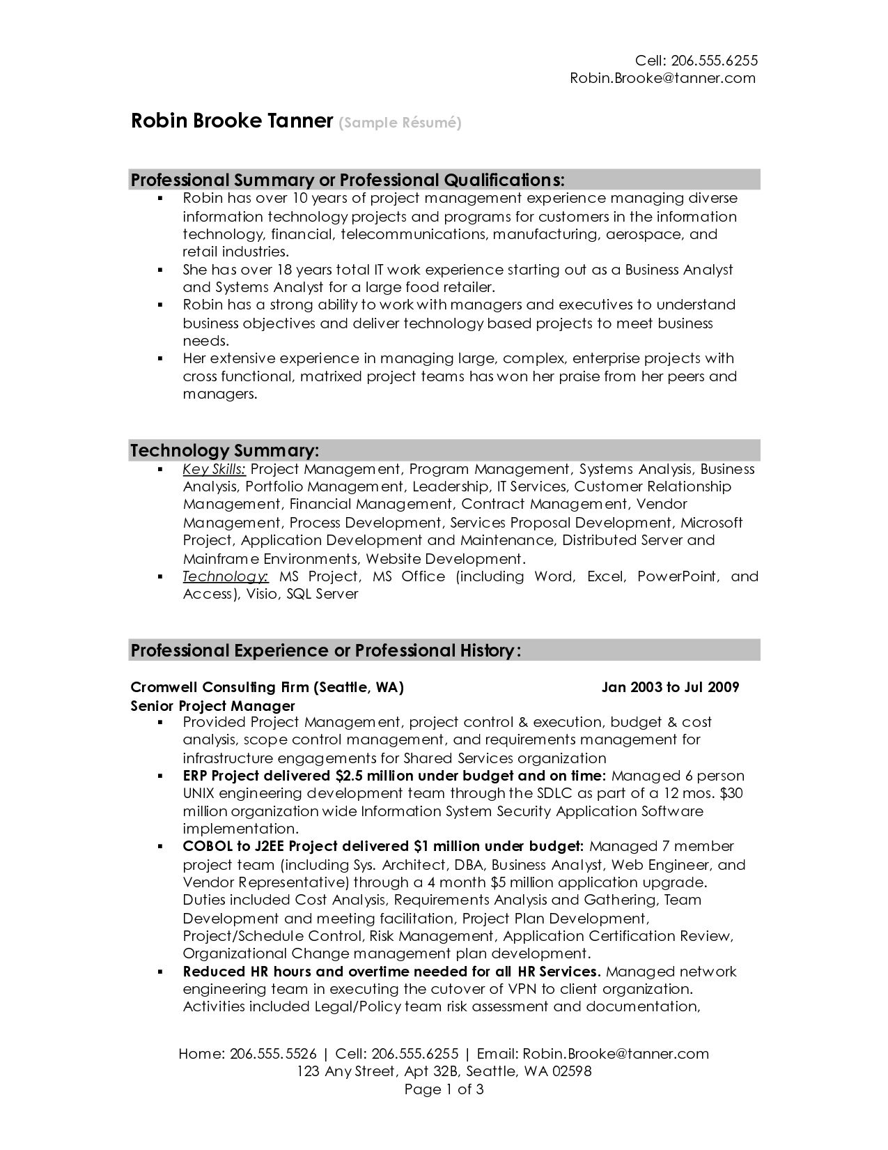 Professional Summary Resume Examples Professional Resume Summary  Example Of Professional Resume