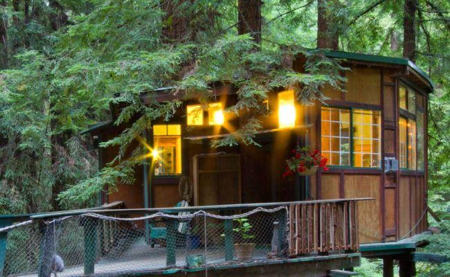 Redwood Treehouse Santa Cruz Mountains On Airbnb 125