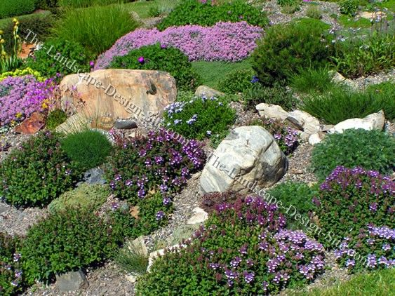 Landscaping For Sloping Backyards Colorful Hillside Rock Garden
