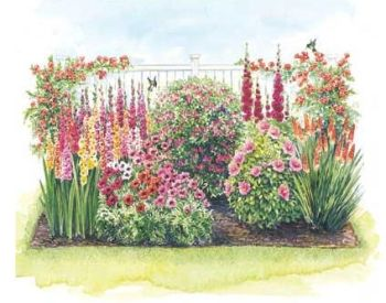 Perennial Flower Garden Design Roses Are Red Violets Are Blue