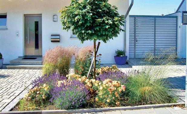 vorgarten anlegen | sichtschutz, Gartengestaltung