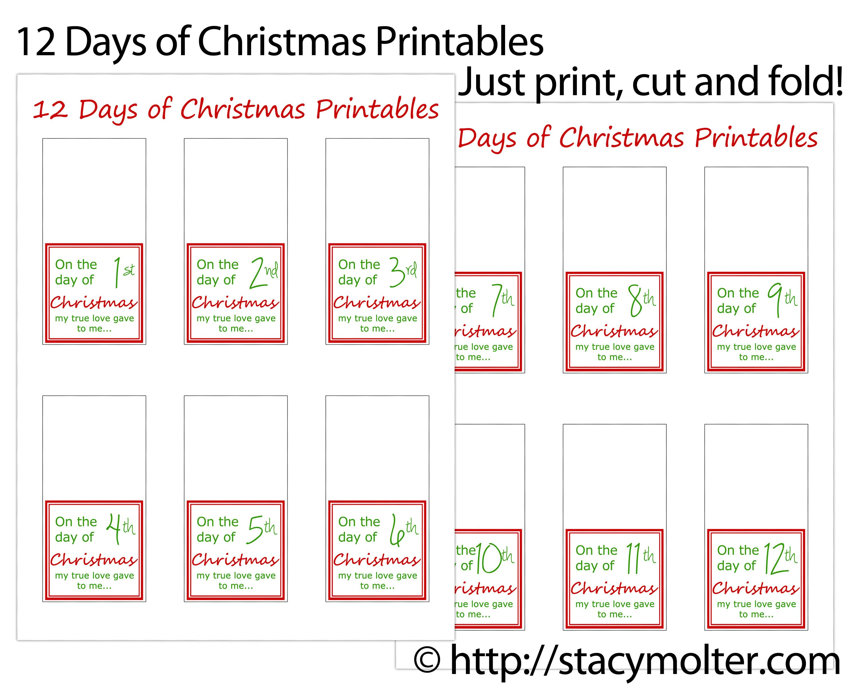 12 Days Of Christmas Ts Ideas For Him