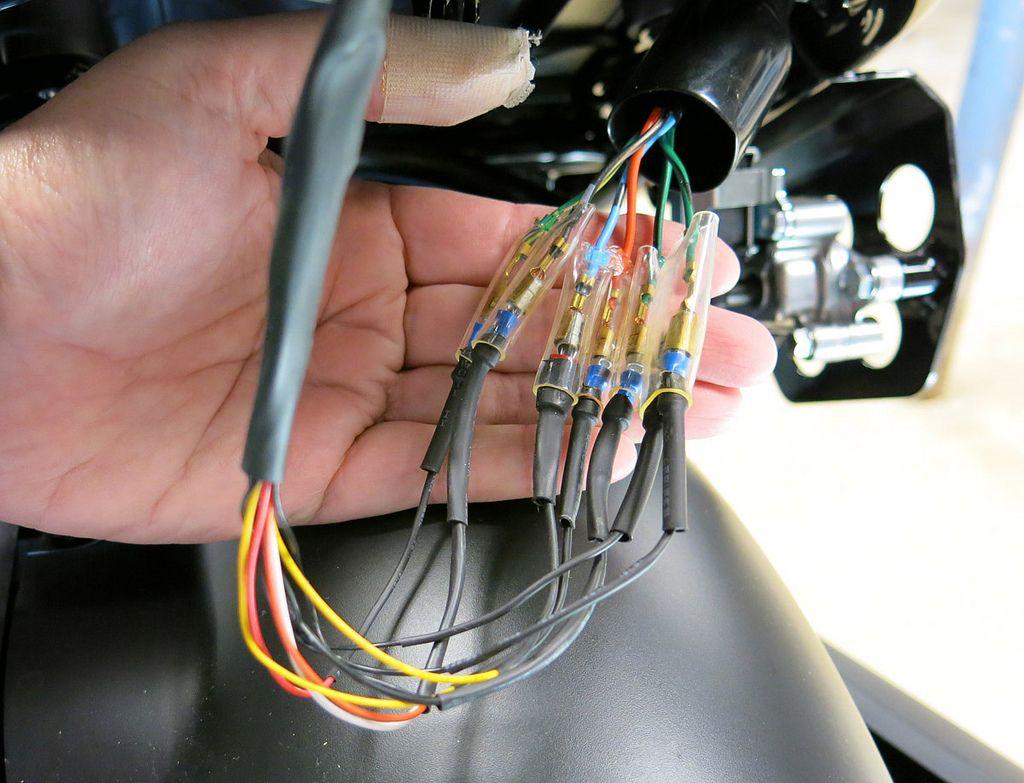 honda zoomer wiring diagram easy brain ruckus tail light 38