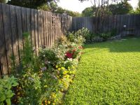 north texas back yard landscaping ideas | Landscaping ...