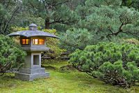 Related Keywords & Suggestions for japanese garden ...