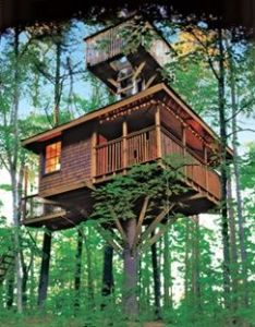 Up in the tree cabin life magazine an other house idea for grand kids  always wanted  also log treehouse community rh za pinterest
