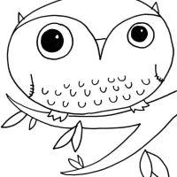 Desktop Coloring Pages Animals Kids Of Printable Laptop Hd Pics Owl