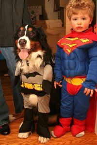 12 Kids Who Are Probably Superheroes | Batman costumes ...