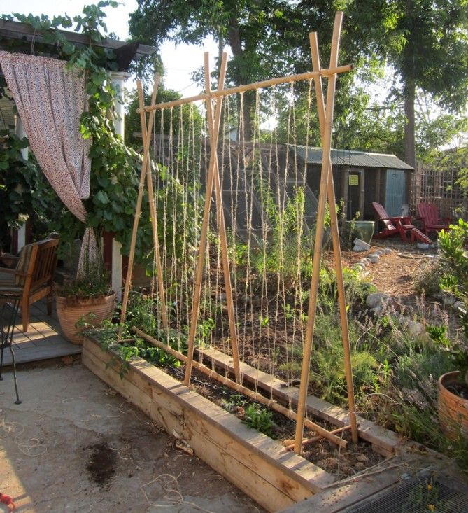 Soompy Com Design Garden Vegetable