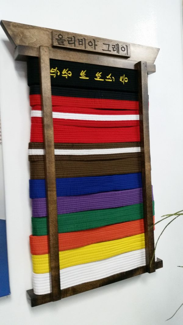 Martial Arts Belt Display Custom. With Korean