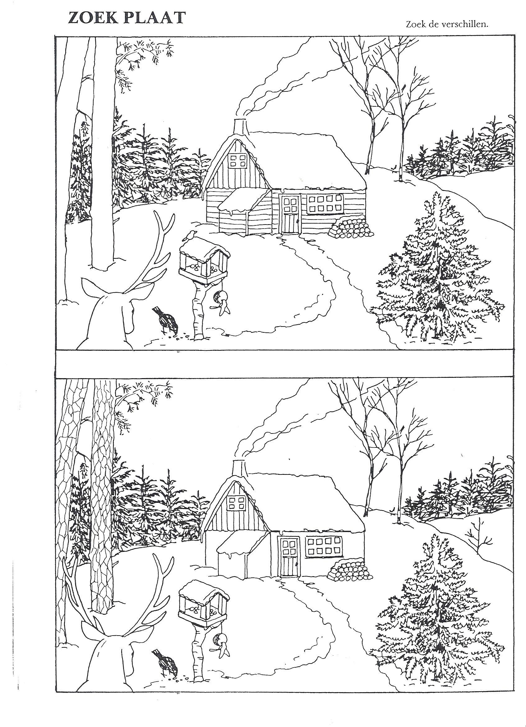 Sneeuw Zoek De Verschillen