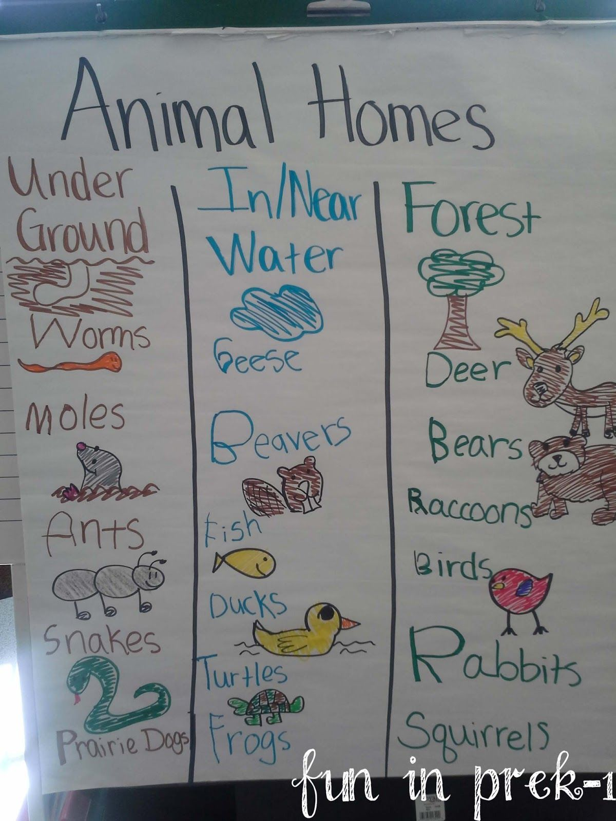 Fun In Prek 1 A Picture Palooza Of Animal Homes Amp Life Cycles