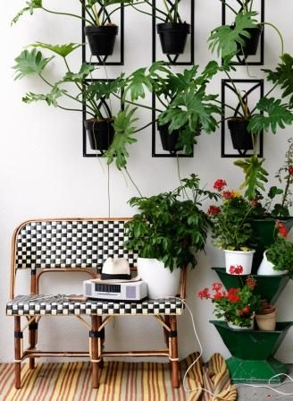 Stylish Indoor Plant Decoration STYLISH INDOOR PLANTS