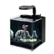 Aqueon Evolve Led Aquarium Kit. In Variety Of