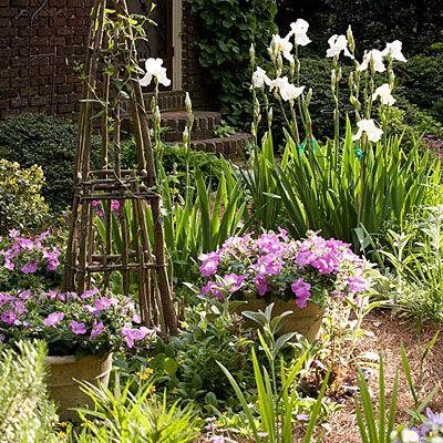 Petunias 122 Container Gardening Ideas Garden Ideas