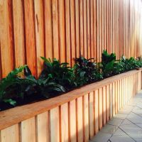 Back yard ideas Timber fence timber planter box | Garden ...