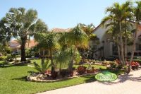 Tropical Front Yard Landscaping Ideas with Palm Trees ...