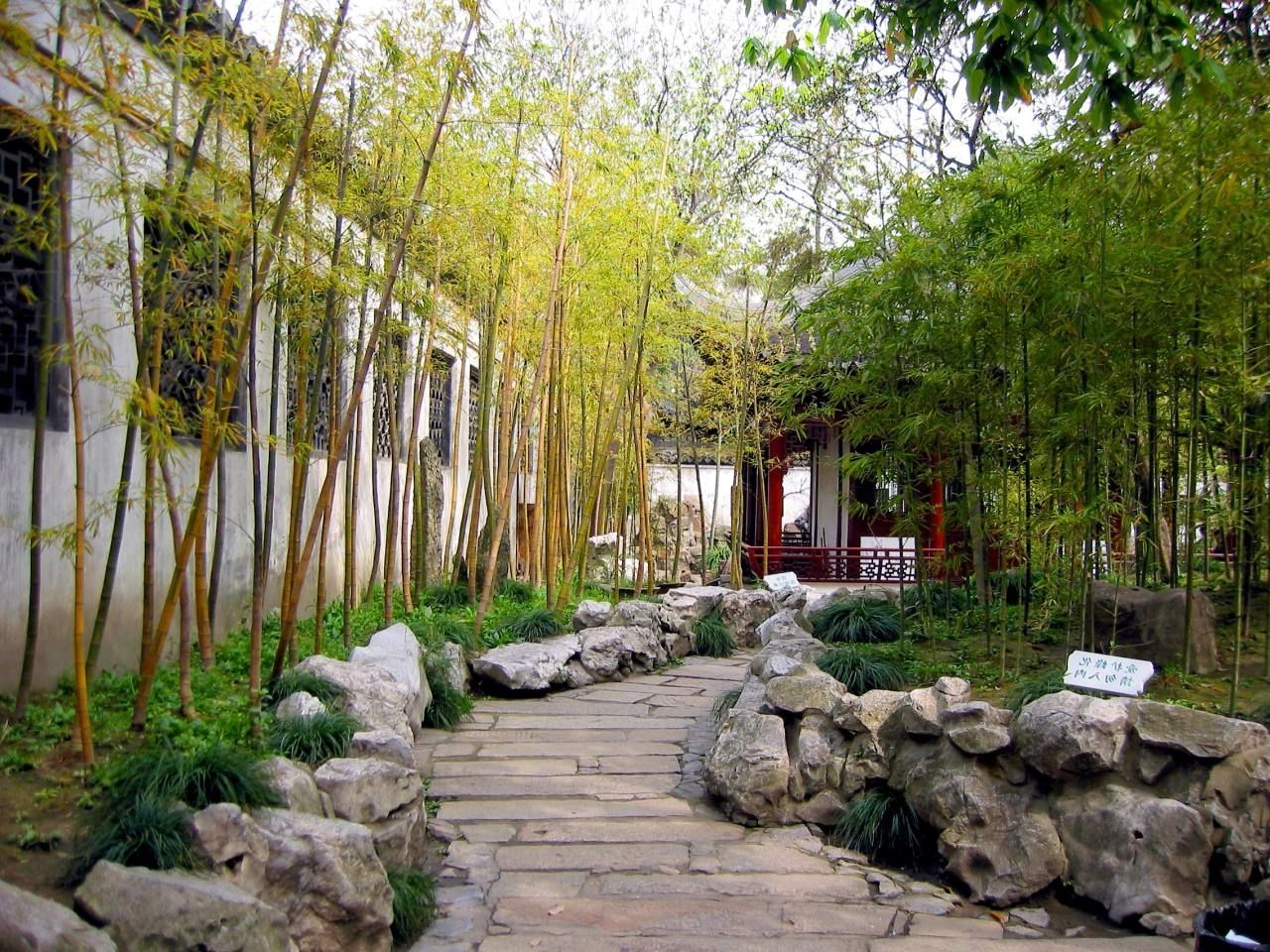 Interesting Arresting Chinese Bamboo Garden Interesting