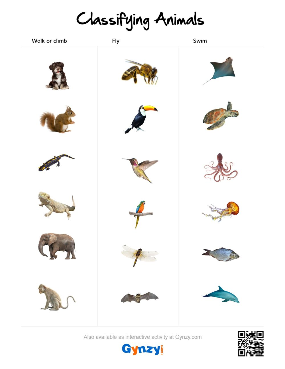 medium resolution of Animal Coverings Scales Worksheet   Printable Worksheets and Activities for  Teachers