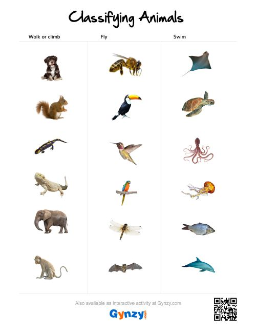 small resolution of Animal Coverings Scales Worksheet   Printable Worksheets and Activities for  Teachers