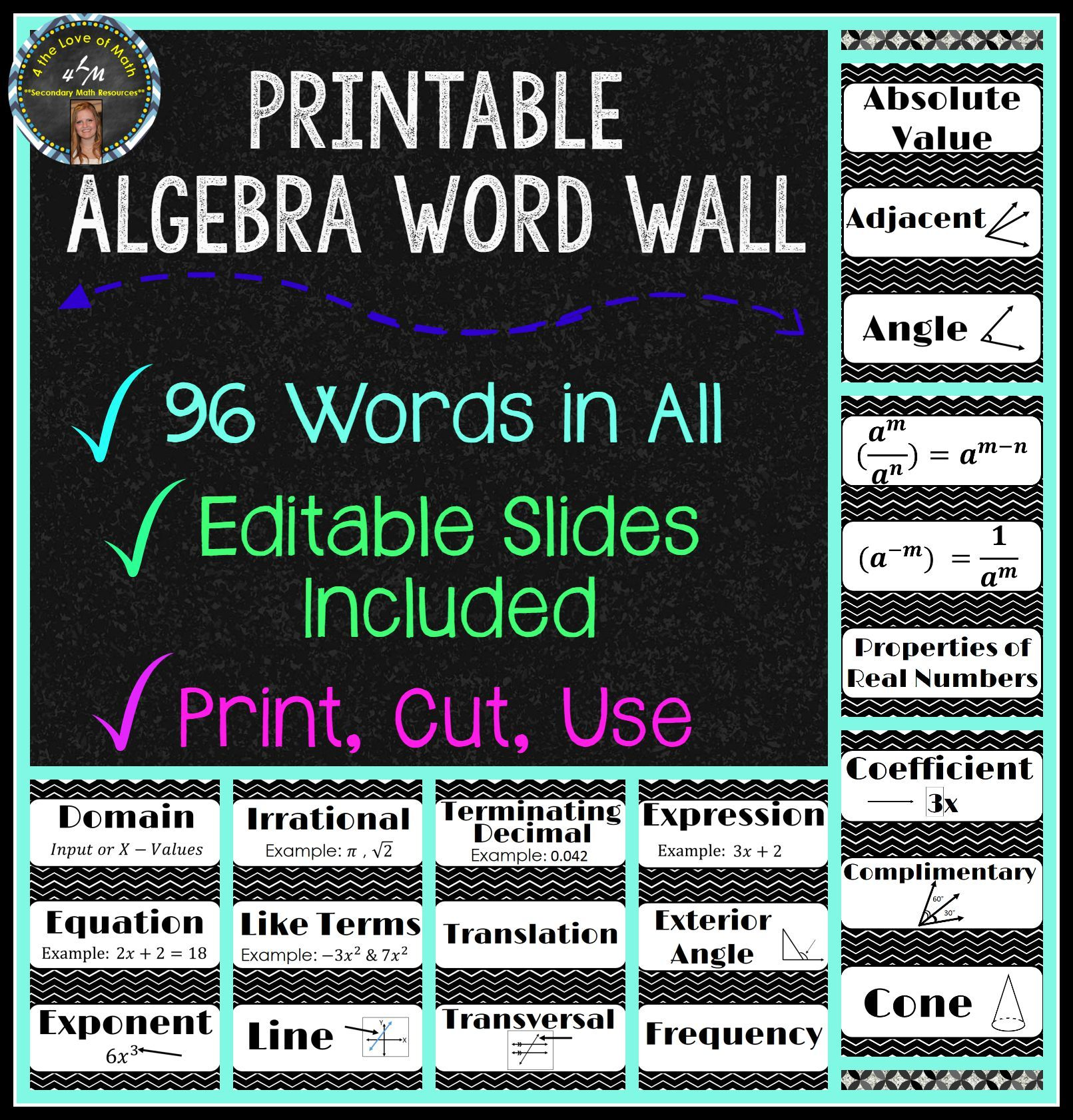 Algebra Word Wall Strips 96 In All