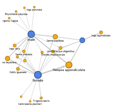 Google Fusion Tables Network Graph: An Experimental App