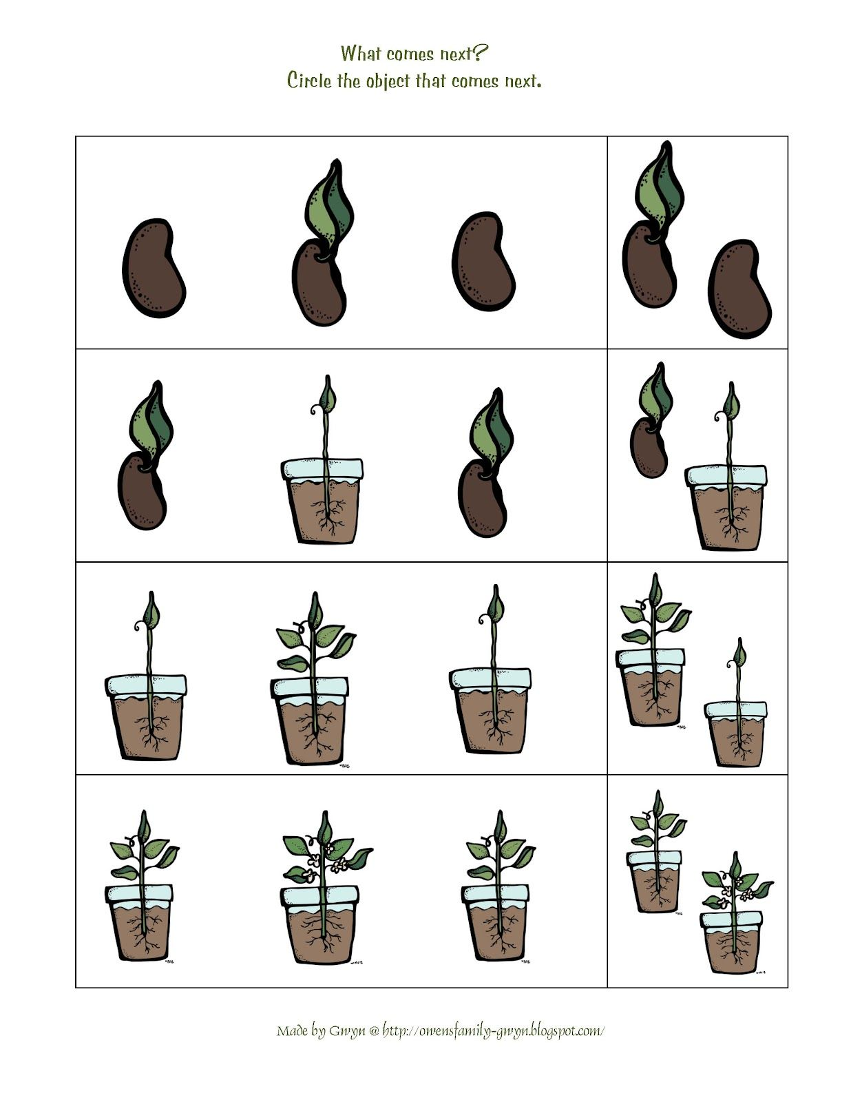 Preschool Printables Plant Life Cycle Printable