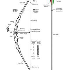 Best Place To Shoot A Deer Diagram 2000 Mitsubishi Montero Wiring Basic Recurve Terminology Jpg 2 3723 354 Pixels