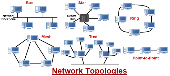 Types Of Network Topologies #network Topologies #topology #bus