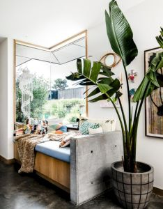 also stunning indoor plants ideas for your living room and bedroom rh pinterest