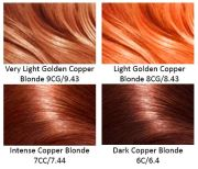 copper hair pinteres