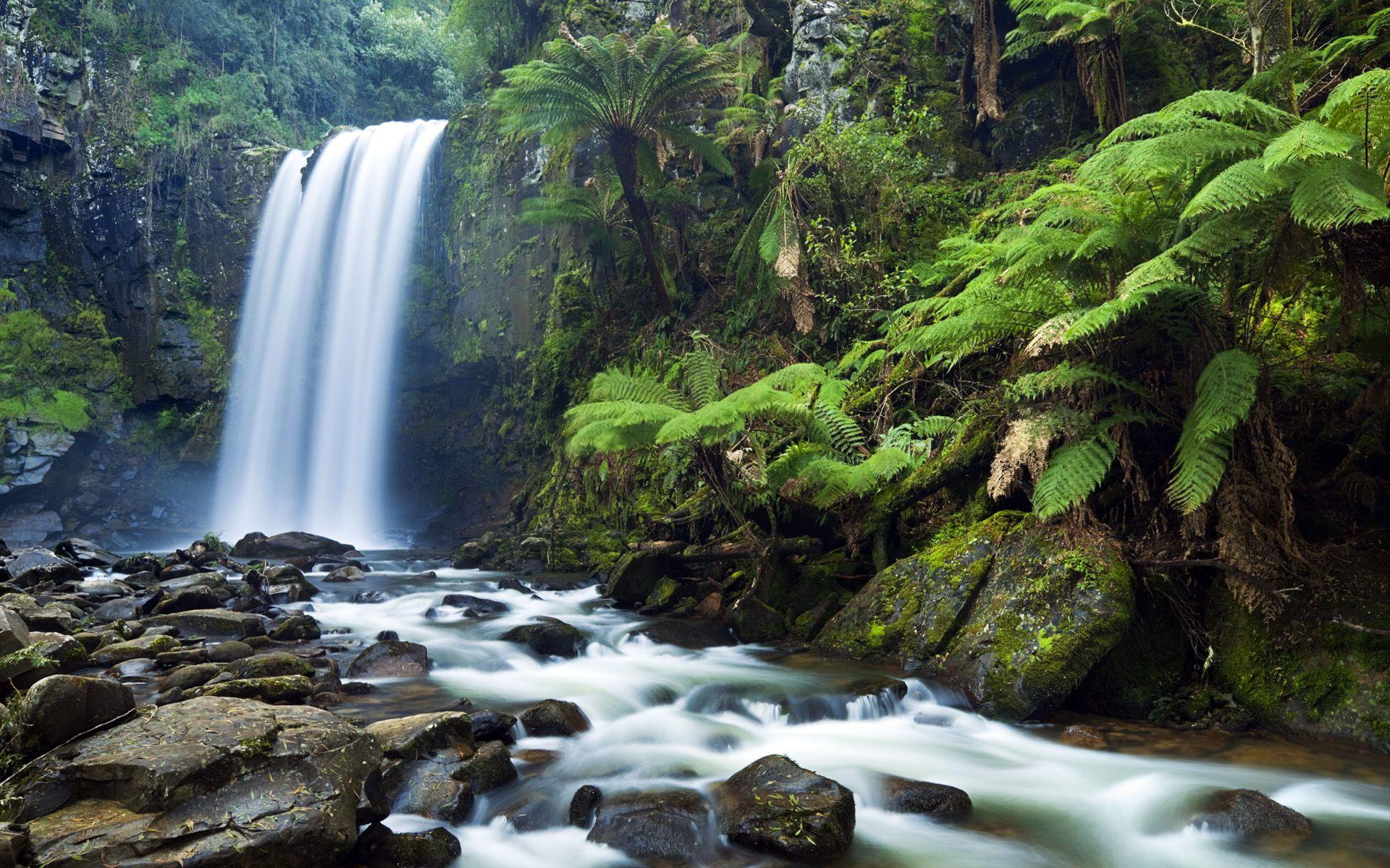 Victoria Falls Live Wallpaper Hd Wallpaper Download Waterfall Hd Wallpaper 1920x1200