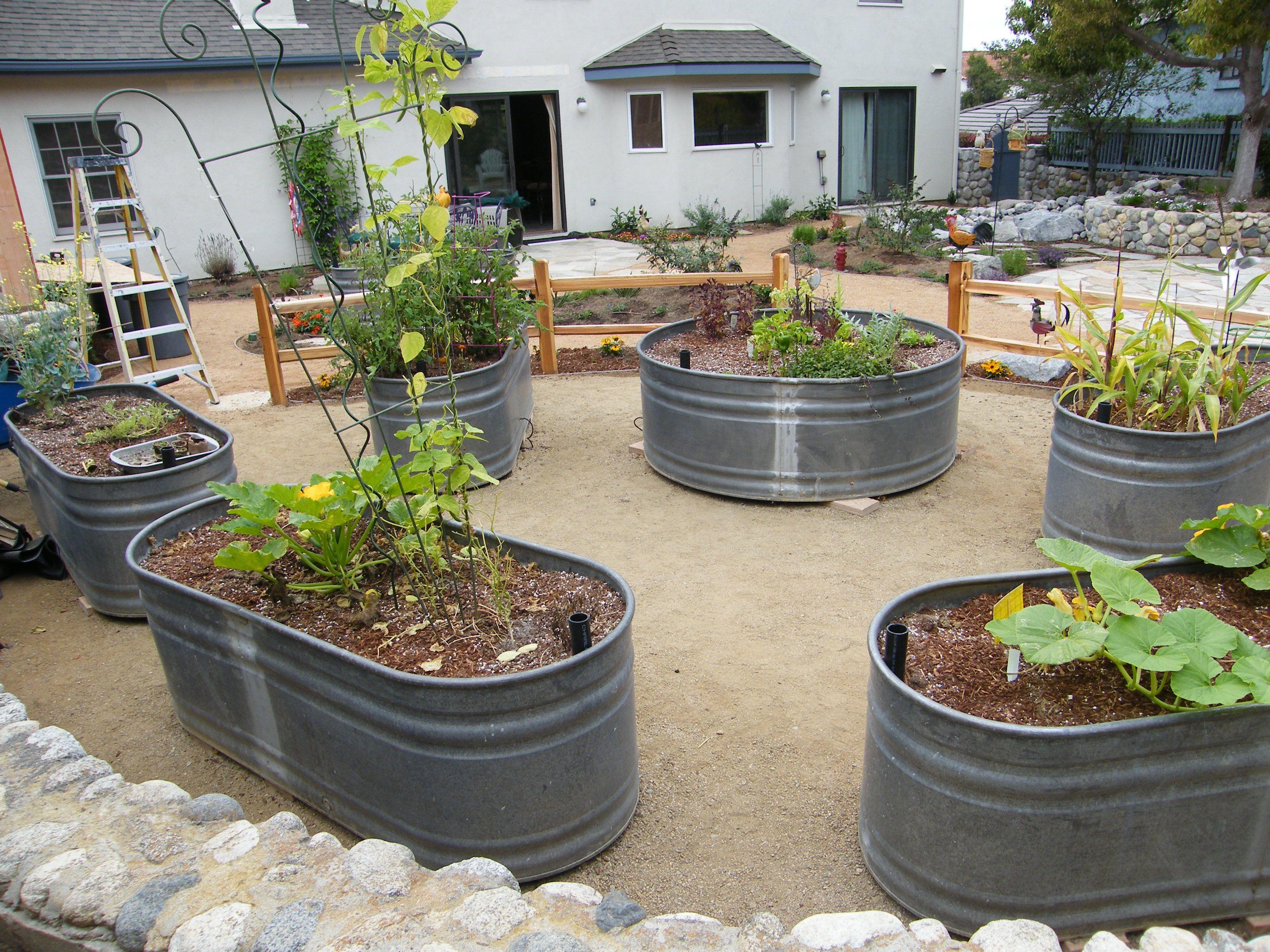 Stock Tank Raised Garden Beds