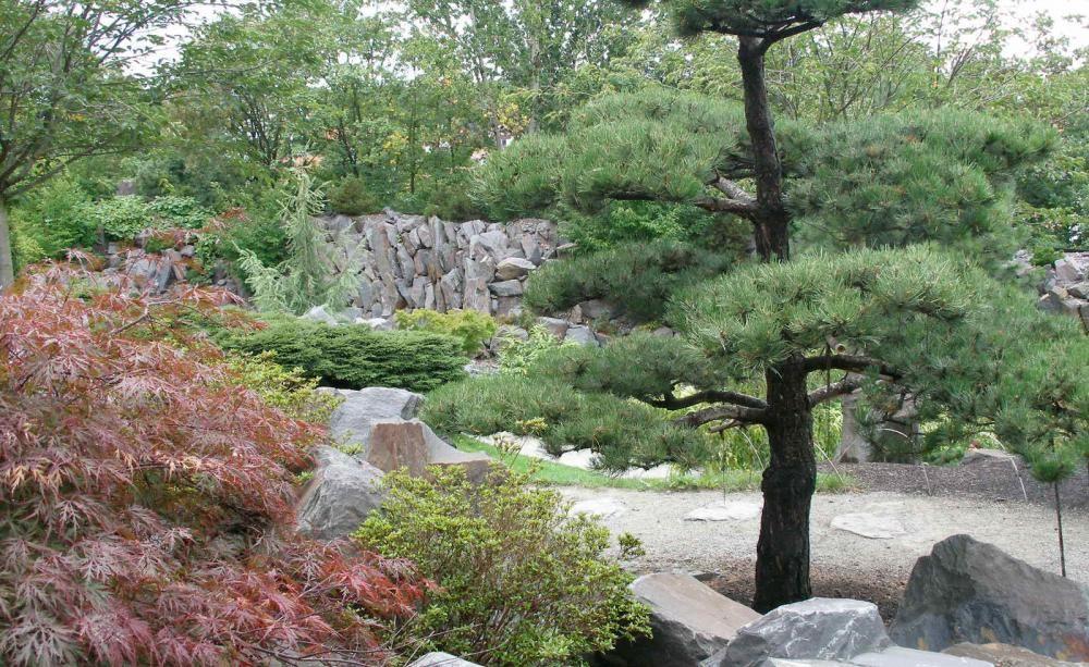Gartengestaltung Nach Feng Shui Feng Shui And Garten