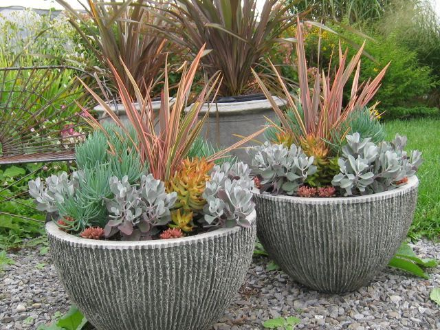 Container Garden Tips With Bob Hyland Gardens Bobs And Designs