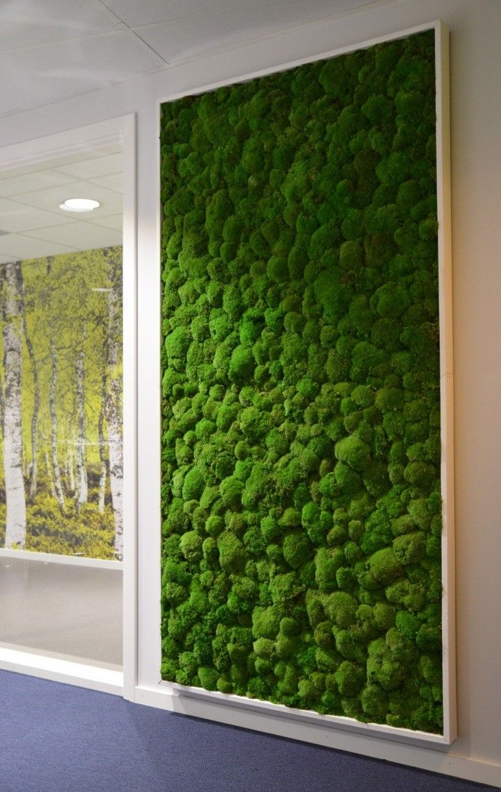 Painting With Moss Tagging Gone Green Moss Wall Office