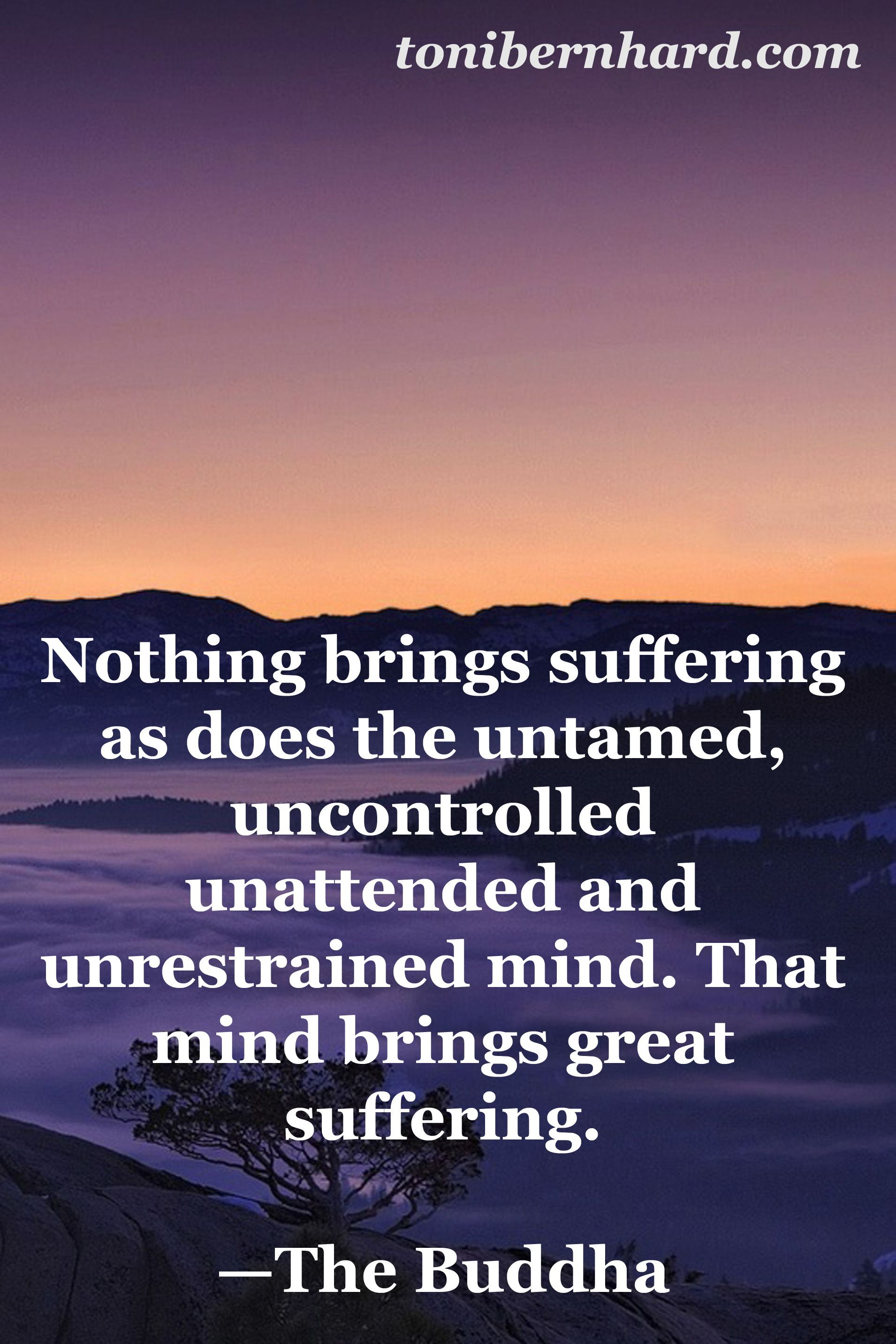 Buddhist Quotes On Death Buddhism Death And Dying Quotes Dead Horse Picture