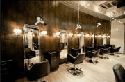 modern ceiling design salon