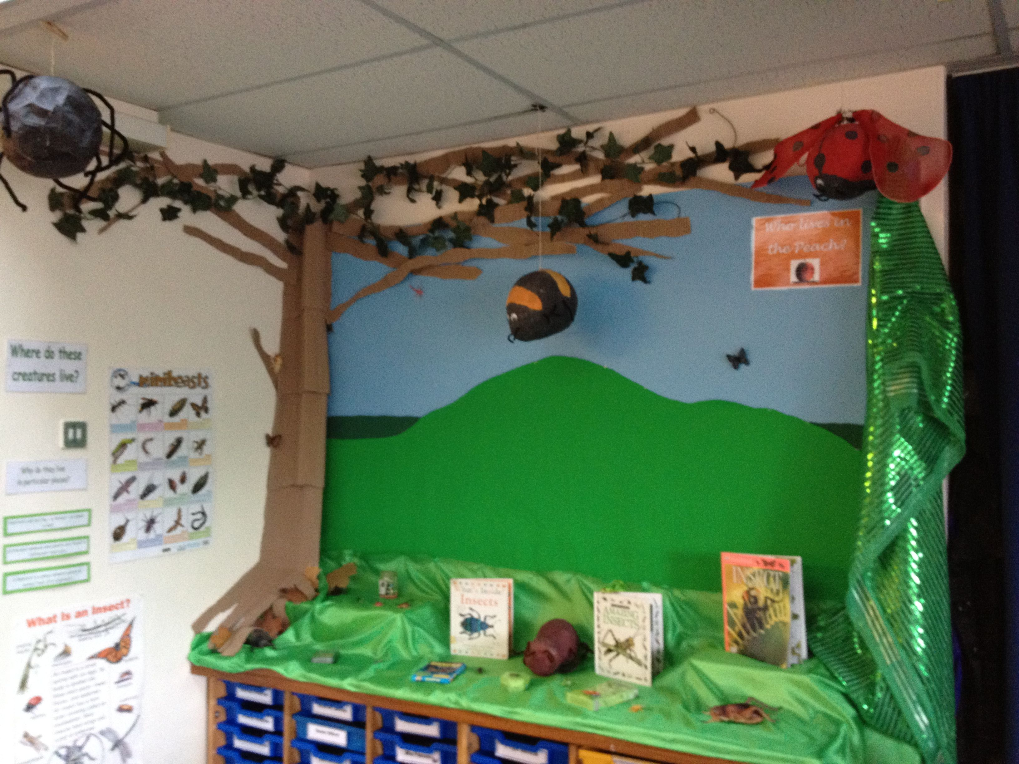 James And The Giant Peach Habitats Classroom Display