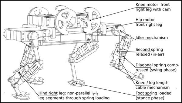 A diagram of the Cheetah-cub robot. Image courtesy of