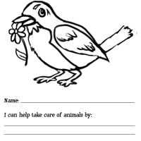 Wallpaper Daisy Animal Journey Coloring Page For Activities Computer Hd