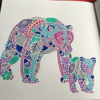 animal kingdom adult colouring book - Google Search ...
