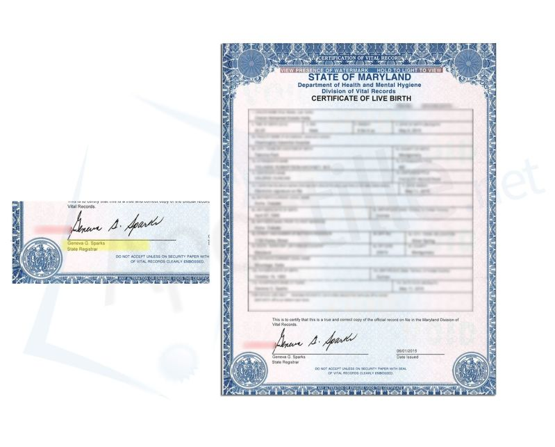 County of montgomery state of maryland birth certificate