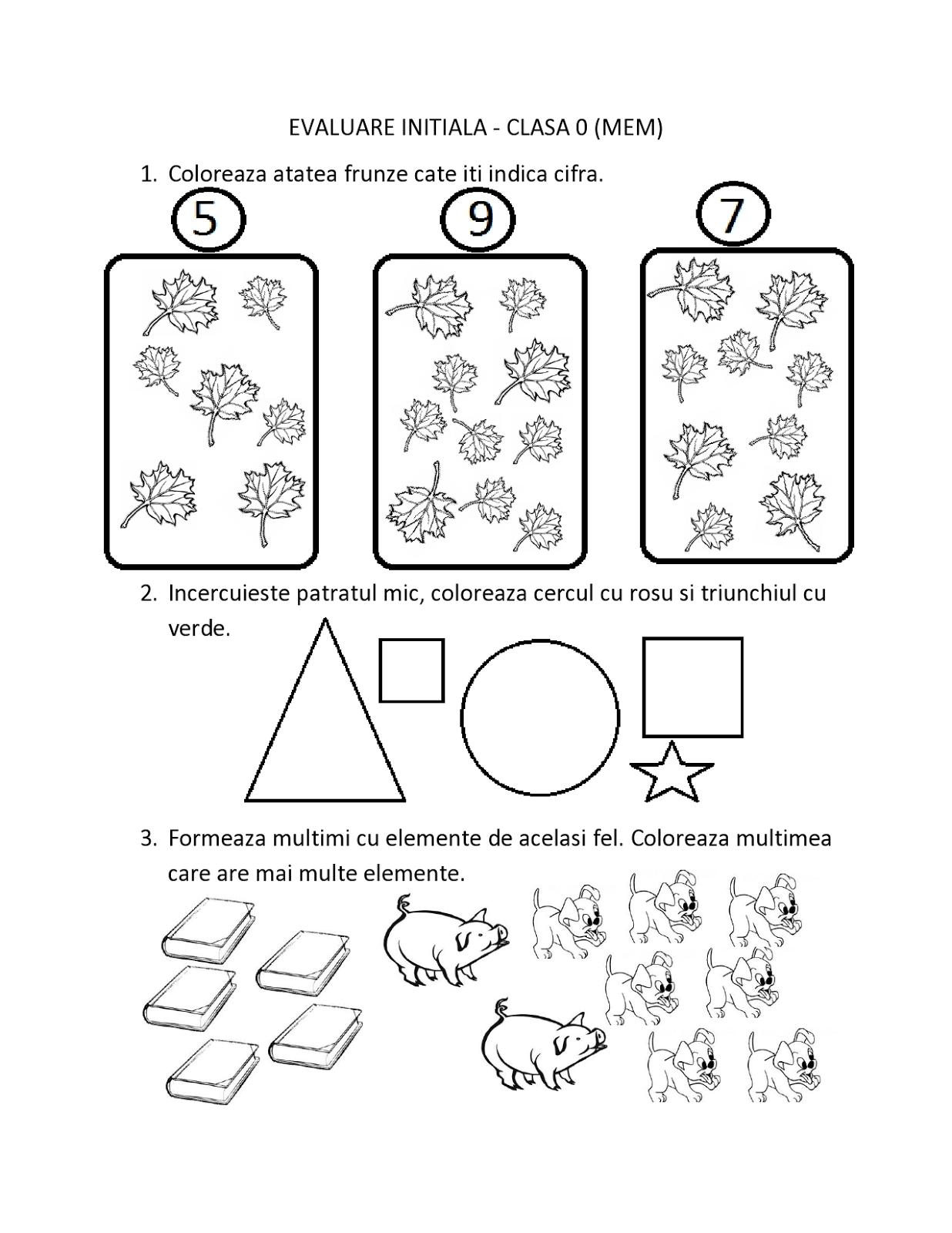 Fise De Evaluare Initiala Pentru Clasa 0 Pregatitoare Mem