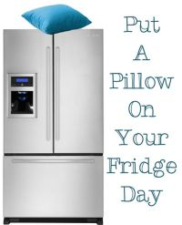 Today is Put A Pillow On Your Fridge Day Yes, Really ...