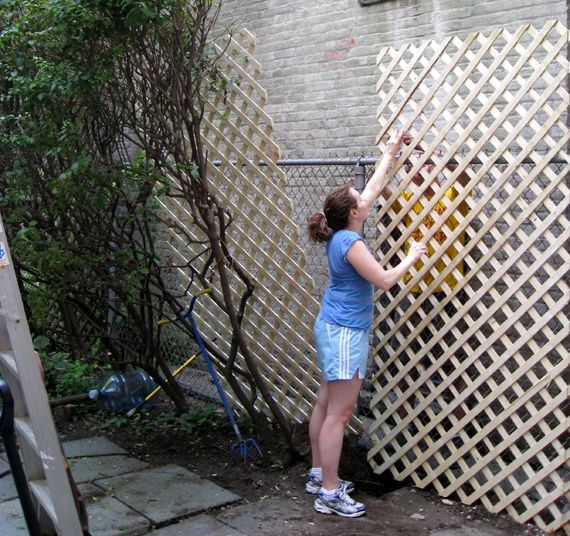 Lattice On Chain Link Fence Good Financially Smart Option For