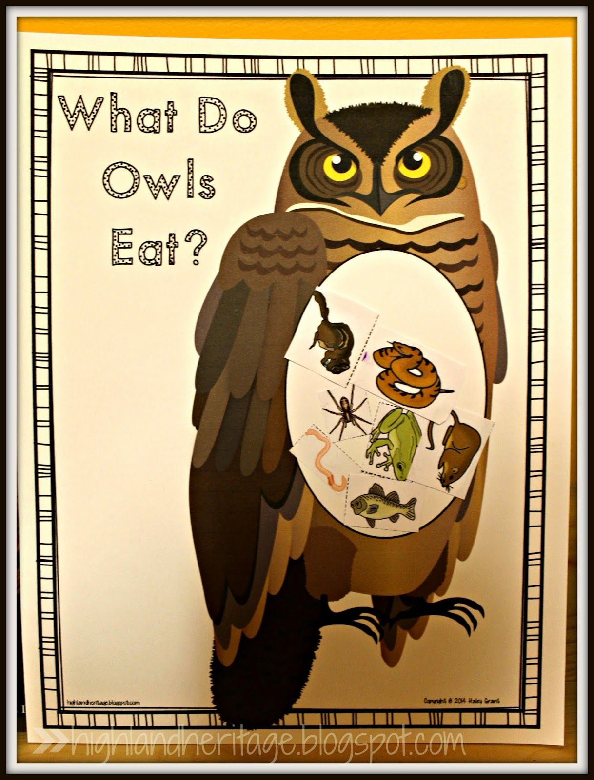 What Do Owls Eat Free Cut And Paste Activity In Both Color And B Amp W