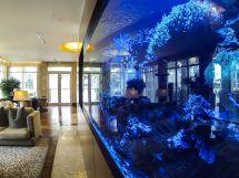 Lobby Tank Reflections Seagate Hotel & Spa 1000