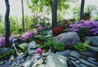 Natural Rock Garden Landscape in Bergen County, NJ: This ...