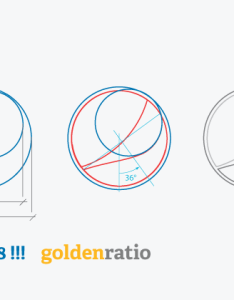 You  ve all seen the infographic of ine proportion in apple logo at last  break down pepsi  golden ratio too course belongs to also ration graphic design pinterest two rh